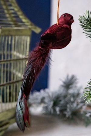 Ёлочная игрушка РАЙСКАЯ ПТИЦА бургунди, перо, 23 см, SHISHI 44702Все Птички<br>У этой райской красавицы-птицы вполне дружелюбный нрав, и потому она великодушно согласилась предоставить вам возможность дополнить праздничный декор её прелестным обликом и экзотичной роскошью великолепного хвоста! <br> <br>Размер - 23 см<br>Материал - пластик, перо<br>Цвет - бургунди<br> <br>Производитель - SHISHI, Норвегия-Эстония<br>Производство расположено в Китае<br>