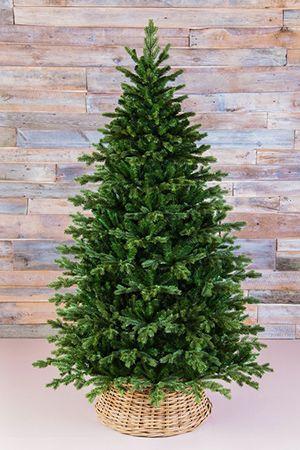 Искусственная елка ШЕРВУД ПРЕМИУМ  (литая хвоя+PVC), 4,25 м, Triumph Tree 73781Ели выше 2,6 м Triumph<br>Эта великолепная ель  уникальна по структуре своей кроны и красоте. Потрясает ее сходство с натуральным деревом!<br> <br>Искусственная ель ШЕРВУД ПРЕМИУМ  - элитная ель высочайшего качества.  Неповторимая красота этой ели достигается тем, что на каждой ее веточке присутствуют отростки с хвоей  разных типов: пластиковая литая хвоя и  хвоя из высококачественного PVC. Литые иголочки визуально неотличимы от натуральной хвои: они упругие,абсолютно несминаемые, мягкие, приятные на ощупь.  Классическая хвоя из PVC  заполняет внутреннее приствольное  пространство, обеспечивая густоту кроны.  Подобная хвойная композиция выглядит необыкновенно эффектно. Искусственная ель  ШЕРВУД ПРЕМИУМ  необычайно  красива. <br> <br>Высота ели - 4,25 м Нижний диаметр - 2,239 м Хвоя - литье (РЕ) + трехслойное PVC<br>Количество веточек - 8724 Длина иглы - 2,5 - 3,0 см<br>Цвет хвои - зеленый.<br>На фотографии может быть изображена искусственная ель этой модели, но другого размера.Ель разбирается до ветвей, компактна, занимает мало места при хранении. Поставляется в коробках из плотного картона, предполагающих многолетнее хранение. Ветви после хранения очень быстро восстанавливают форму. Собирается ель быстро, благодаря цветной маркировке веток и точек крепления. Имеет металлическую подставку, обеспечивающую устойчивость. Ель сертифицирована по европейским стандартам качества и безопасности.Ель производится фирмой TRIUMPH TREE, Голландия, изготавливается в Тайланде Производители дают гарантию 10 лет на все ели TRIUMPH.Ели TRIUMPH входят в число лидеров рождественских продаж во многих странах Европы.<br>