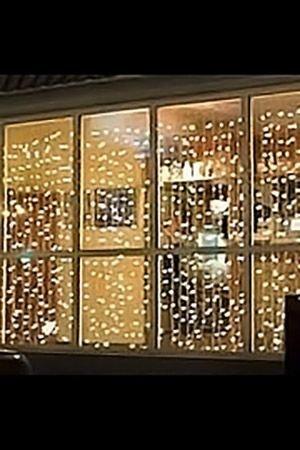 Световой занавес PLAY LIGHT, 1425 прозрачных ламп, коннектор, 2,4х6м, зеленый провод CL-1425-E/6Световые занавесы с микролампами<br>Световой занавес PLAY LIGHT имеет основной провод длиной 2,4 м, с которого свисают вертикальные нити длиной 6 м каждая. Гирлянда снабжена коннектором, позволяющим соединять последовательно до четырех занавесей. Световой занавес необыкновенно наряден, он украсит любое помещение, придав ему радостный праздничный стиль. С помощью светового занавеса можно создавать красивые декоративные световые ширмы, оформлять огнями разнообразные плоскости, декорировать объемные объекты. <br> <br>Характеристики:<br>Размер занавеса - 2,4 х 6 м <br>Подводящий провод – 0,7 м<br>Цвет проводов - зеленый <br>Количество лампочек - 1425<br>Цвет лампочек - прозрачный <br>Количество нитей – 25 шт. <br>Коннектор - до 4-х гирлянд<br>Мощность – 356 Вт <br>Для использования в внутри помещений.<br>