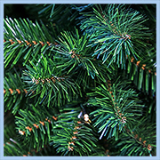 Хвоя настольной елки New Noble Spruce Tree с лампочками, National Tree Co